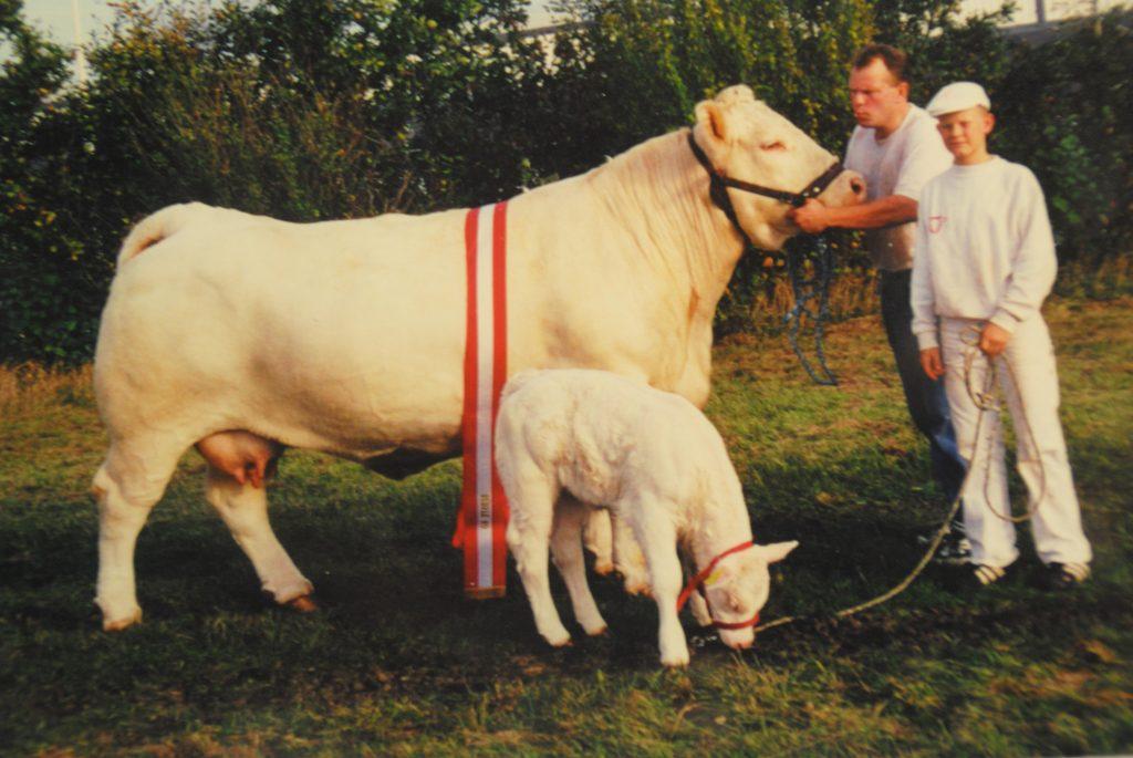 Bloksdal Irma (83459-00037), som 2. kalvs ko i 2000 med en vægt på 1086 kg.